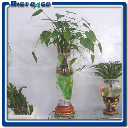 供应年宵花盆2011最新水培玻璃花瓶 高档水培容器凯奇盆艺批发图片