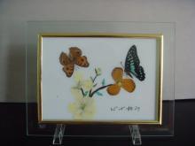 供应蝴蝶画工艺品