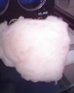 绵羊绒图片/绵羊绒样板图 (1)
