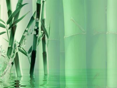 供应竹叶抗氧物图片