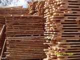 海南橡胶木