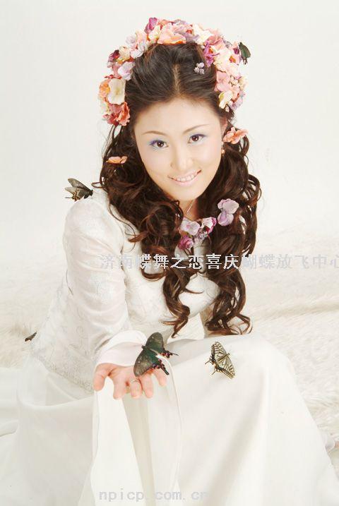 供应蝶舞之恋蝴蝶婚礼申请链接图片
