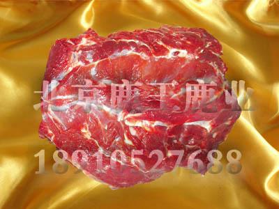 供应北京鹿肉价格