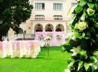供应婚礼绿化草毯
