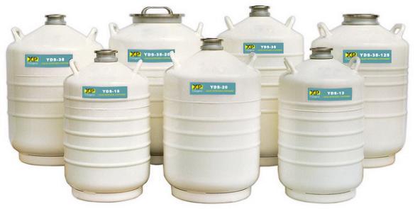 供应YDS-10贮存型液氮容器批发图片