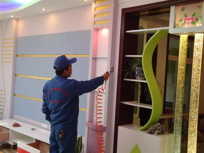 2010中国室内环境保护行业高峰图片/2010中国室内环境保护行业高峰样板图