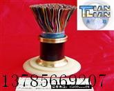 供应ZR-HYA阻燃通信电缆