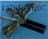 市话通信电缆HPVV