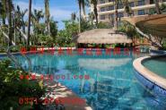游泳池泳道线图片