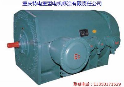 重庆特种电机产品修理防爆电机