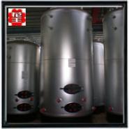 立式1吨蒸汽锅炉图片