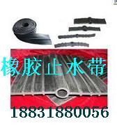 台湾止水带中埋式橡胶止水带图片/台湾止水带中埋式橡胶止水带样板图