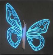 夜光蝴蝶专用夜光粉图片