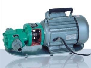 供应WCB型齿轮油泵,手提式齿轮泵批发