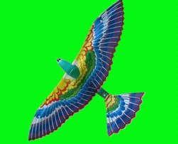 供应飞鸟玩具