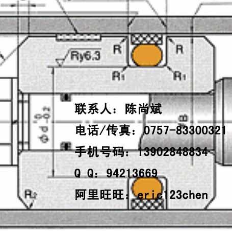 供应日本NOKSPGO油封