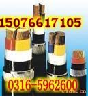 5芯/VV电力电缆图片