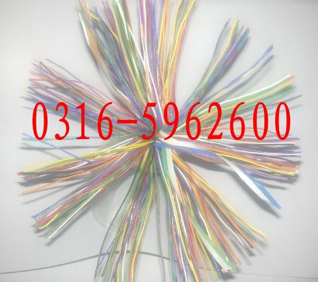 通讯电缆图片 通讯电缆样板图 通讯电缆HYV MHYV 天津市...