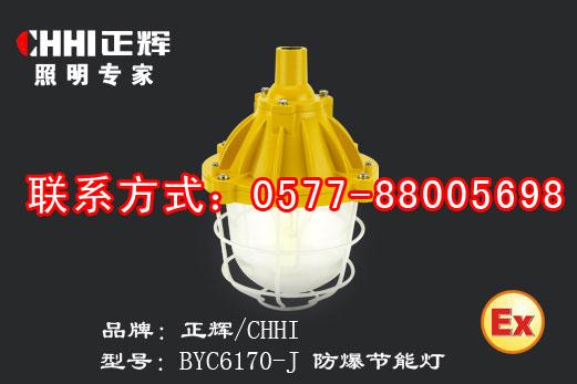 供应BYC6170-Y防爆节能灯-正辉照明-照明灯具-专门用途灯批发