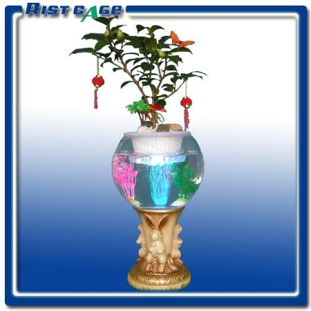 大花蕙兰,君子兰,红掌,粉掌,凤梨,杜鹃,茶花,水仙花,风信子,发财树